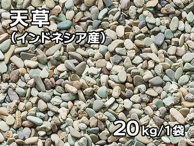 天草(インドネシア産) 20kg