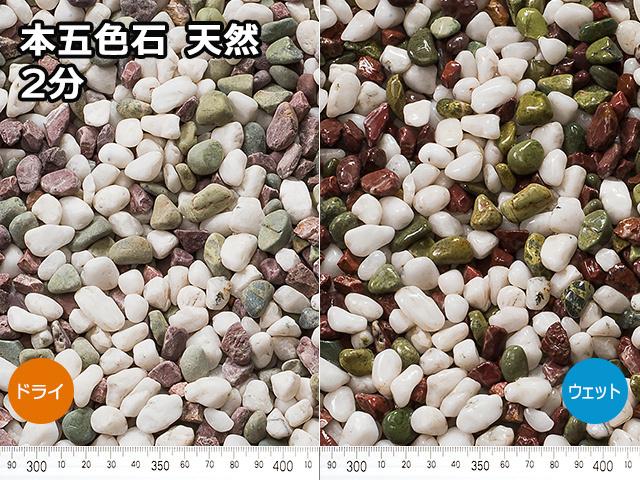 本五色石 天然(フィリピン産) 20kg 2分