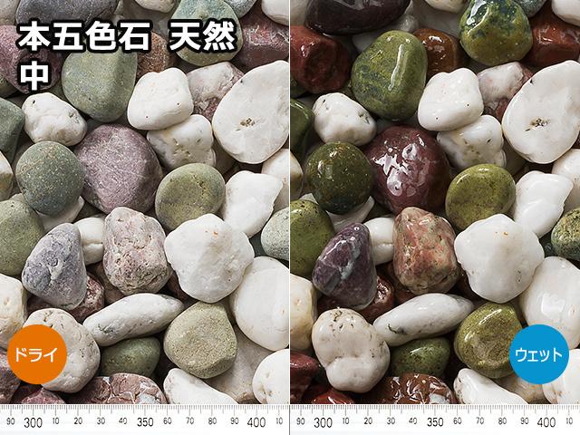 本五色石 天然(フィリピン産) 20kg 中