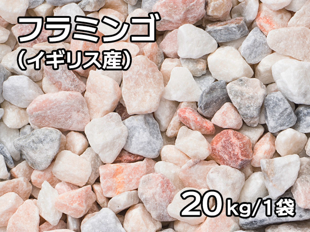 フラミンゴ(イギリス産) 20kg