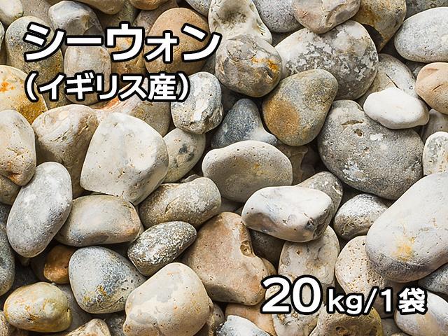 シーウォン(イギリス産) 20kg