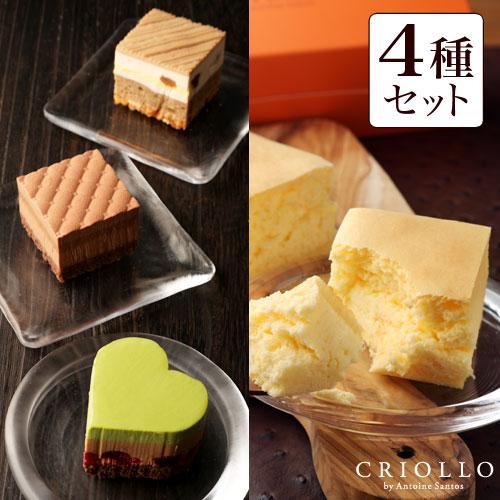 幻のチーズケーキ&プチガトー3種