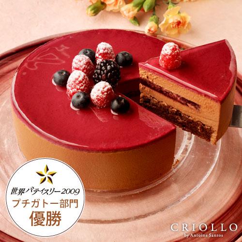 ニルヴァナ(5号:直径15cm)【バースデーケーキ(ブラックベリー&チョコレートケーキ)】【冷凍便】