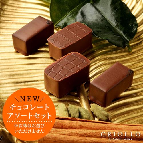 チョコレート 訳あり お試しセット 4個