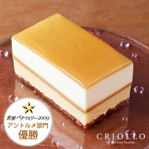 バニラムースとキャラメルのケーキ『ガイア』(ハーフサイズ)約1~2名様用【冷凍便】