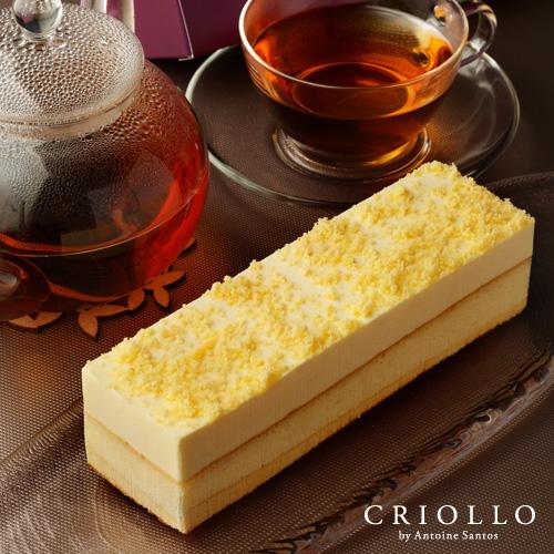 レア・ベイクド・フロマージュ 約2~3名用 長方形 【冷凍便】【チーズケーキ】