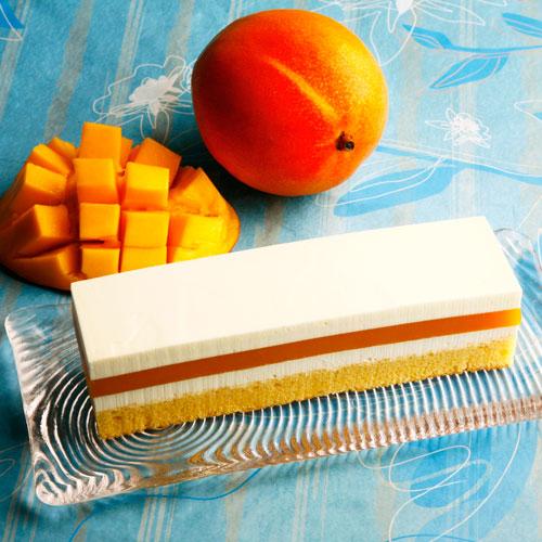 レアチーズ・マンゴーケーキ 長方形 2~3名様向け【冷凍便】