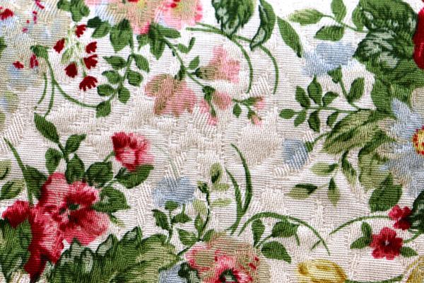 有輪商店の フクレジャガード フラワープリント ベージュ地にピンク系の花
