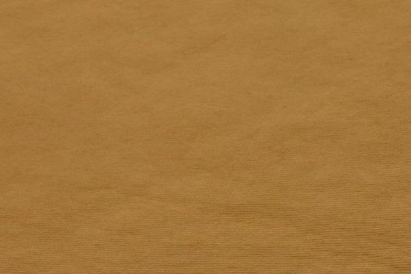 エコバッグや雨具に最適な 弱撥水加工 150cm巾のナイロンタフタ ベージュ