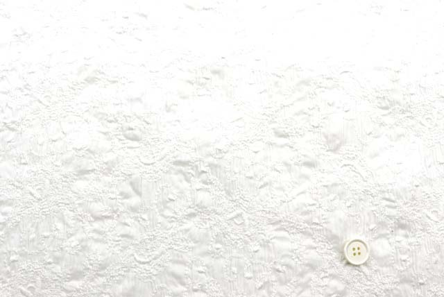 コットンローンストレッチ刺しゅうレース生地 (ニット生地ではありません) 白 【50cm単位】 (4153-77)