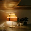 照明キット「陽林」(電球付き 木工工作キット)