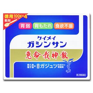 【第2類医薬品】恵命我神散 けいめいがしんさん 散剤 徳用 100g×4 スプーン付き