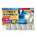 【第(2)類医薬品】ロート アルガード鼻炎内服薬Z II 20カプセル