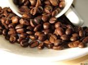 ◆送料無料・お試しセット(粉)(初回購入者の方のみ)2種類・マンデリンの味くらべ
