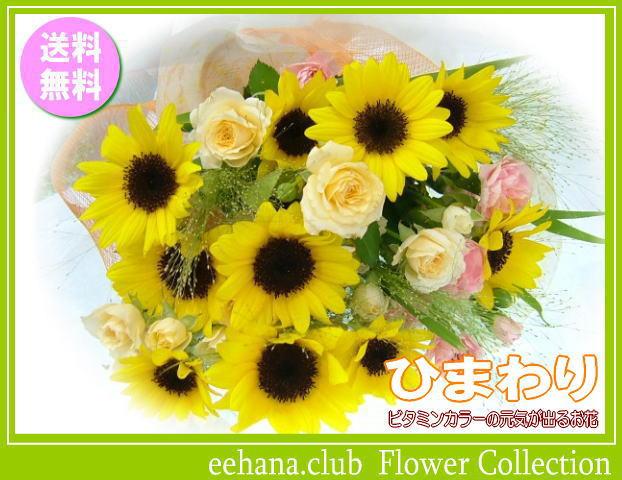 8月の誕生花★ひまわり花束3,500円【送料無料】花言葉カード付き