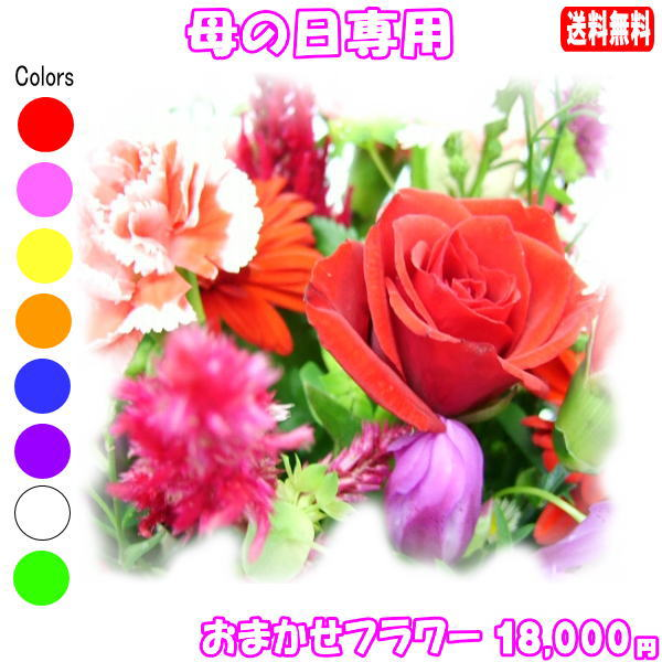 母の日に贈る花★デザイナーにおまかせ18,000円【送料無料】ネット特価!!