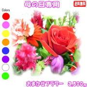 母の日に贈る花★デザイナーにおまかせ3,500円【送料無料】ネット特価!!