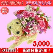 2020★母の日★アニマルアレンジ5,500円【送料無料】ネット特価!