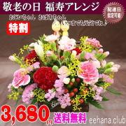 敬老の日★福寿アレンジ3,680円【送料無料】ネット特価!