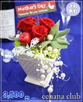 ★母の日★プリザーブドフラワー【鮮やかレッド】3,500円【送料無料】ネット特価!