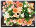 マッキンリー5,000円-【フラワーアレンジ】ネット特価!