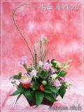 正月アレンジ★2014年迎春【福延】3,500円【送料無料】ネット特価!!