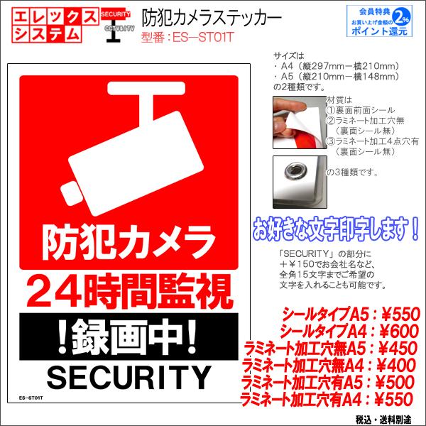 防犯カメラステッカー|シール・ラミネートタイプ|お名前・お会社名印字可|A4・A5サイズ|目イラスト入り|ES-ST06T
