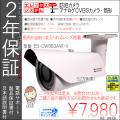 【2年保証】防犯カメラ(アナログCVBS52万画素)|ドーム型|家庭用・業務用|超広角レンズ|ES-CW887AW/V