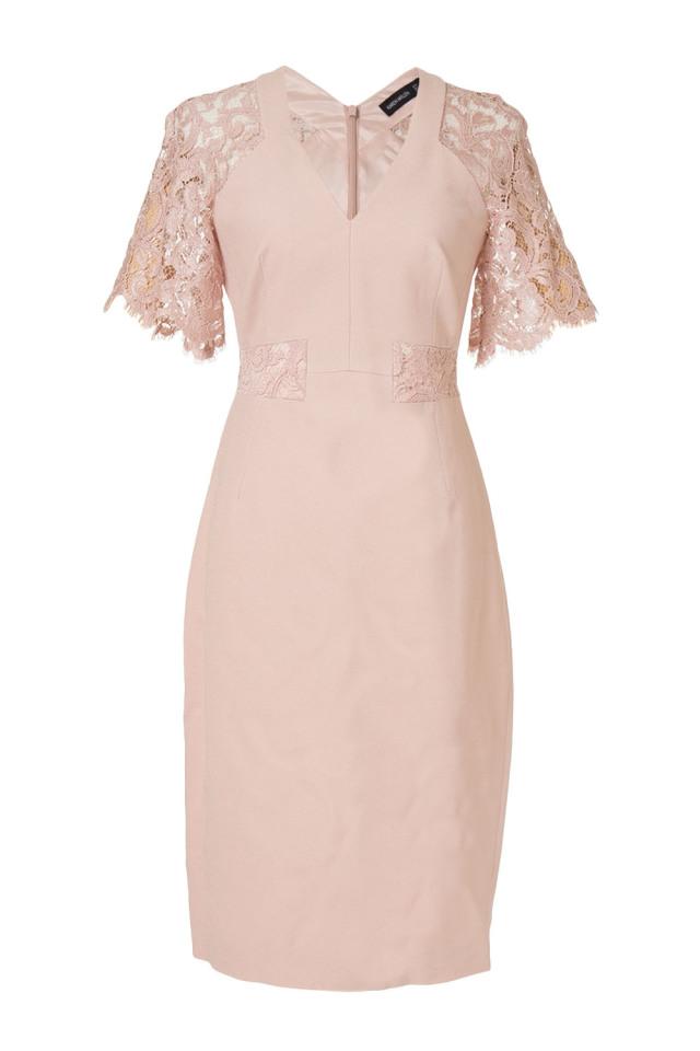 Lace Sleeve Dress【2泊3日】