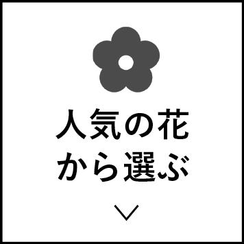 人気の花から選ぶ