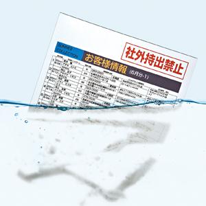 サンワサプライ JP-MTSECA4 水に溶ける用紙
