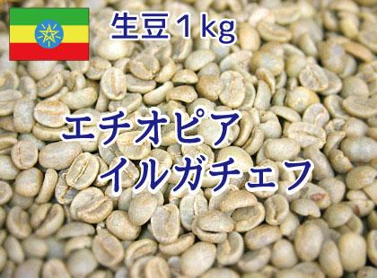 【生豆】 エチオピア イルガチェフ ウォッシュド 1kg