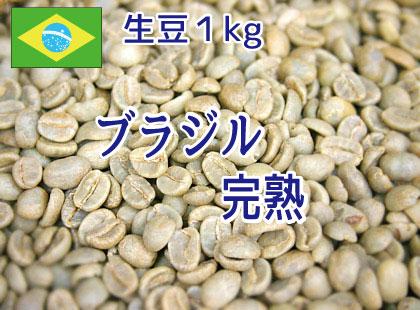 【生豆】 ブラジル 完熟1kg