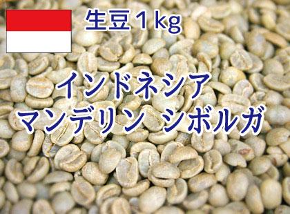【生豆】 インドネシア マンデリン シボルガ スーパーグレード 1kg