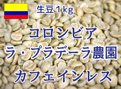 【生豆】 コロンビア ラ・プラデーラ農園 カフェインレス1kg