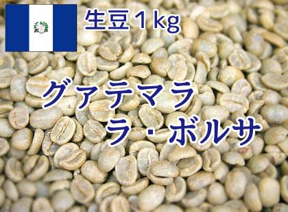 【生豆】 グァテマラ ラ・ボルサ 1kg