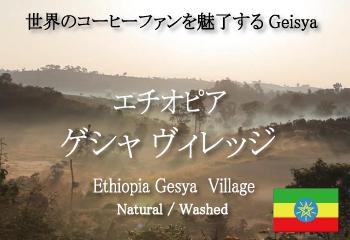 エチオピア ゲイシャ ゲシャ・ビレッジ農園 飲み比べセット / コーヒー豆