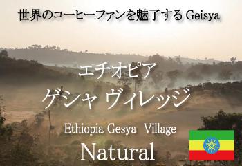 エチオピア ゲイシャ ゲシャ・ビレッジ農園 ナチュラル / コーヒー豆