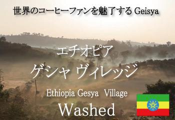 エチオピア ゲイシャ ゲシャ・ビレッジ農園 ウォッシュド / コーヒー豆