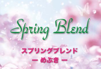 スプリングブレンド 【春ブレンド -めぶき- 】