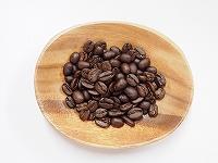 インドネシア ガヨマウンテン / コーヒー豆