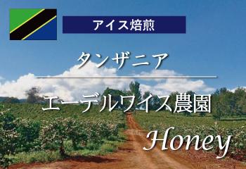【アイスコーヒー焙煎】 タンザニア エーデルワイス農園 ハニー