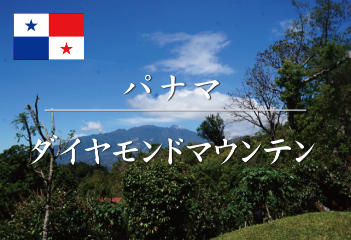 パナマ ダイヤモンドマウンテン / コーヒー豆