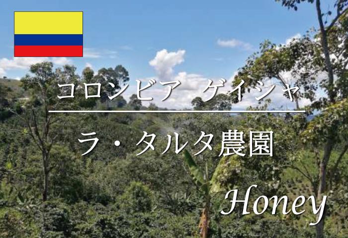 コロンビア タルタ