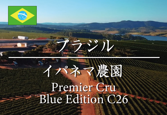 ブラジル イパネマ農園プレミアクリュ (C26 Blue Edition)/コーヒー豆