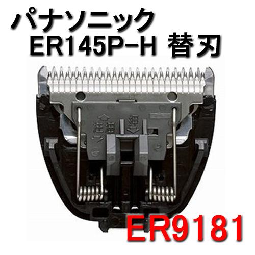 Panasonic(パナソニック) 替刃 ER9181 (ER145P-H専用替刃)