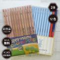 パステルカラー鉛筆(赤鉛筆+赤青鉛筆+色鉛筆セット)