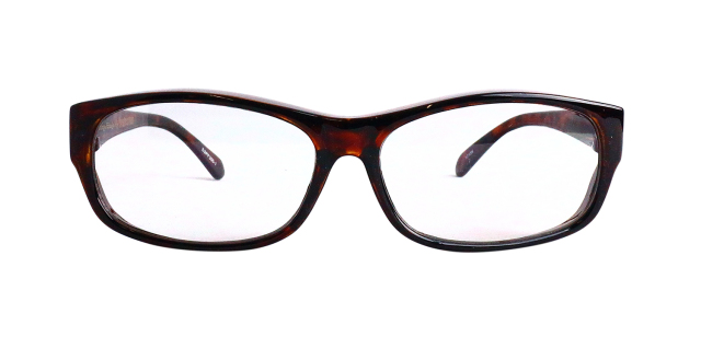 ESPF300-1(Frame:Clear Brown/Lens:Clear)