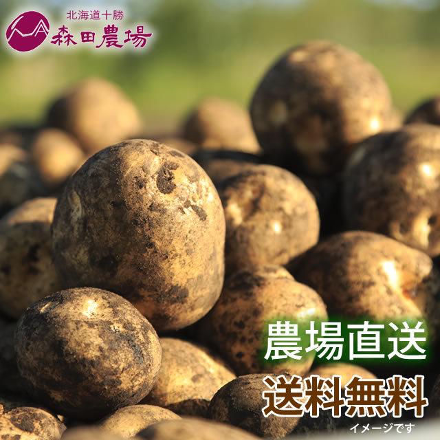 【北海道産】とうや・ホッカイコガネ食べ比べセット 約7kg 発送は10月中旬ごろ