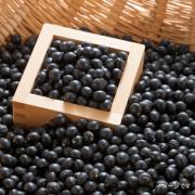【北海道産】特選黒大豆 10kg